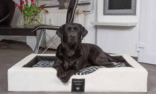 BRANDNEU – innovative GEL-Hundebetten