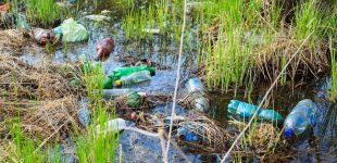 SodaStream zur Entdeckung des PETase-Enzyms: Industrie und Verbraucher sollten weiter unnötiges Plastik vermeiden