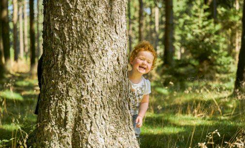 Die Luft ist rein: www.heilklima.de
