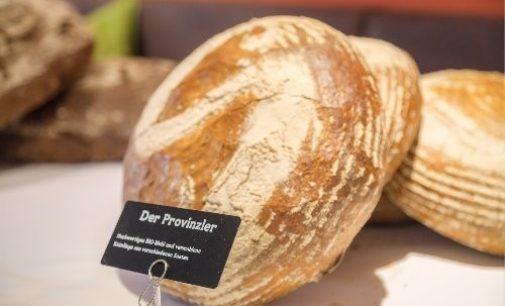 Neue Brotidee der Bäckerei Szihn als Nährstoffwunder