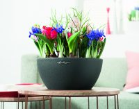 Frühlingserwachen – mit den Pflanzgefäßen von LECHUZA