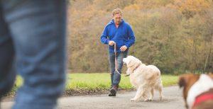 Hunde-Experte Steffen Kröber hilft Menschen, das Verhalten ihrer Hunde besser zu verstehen.