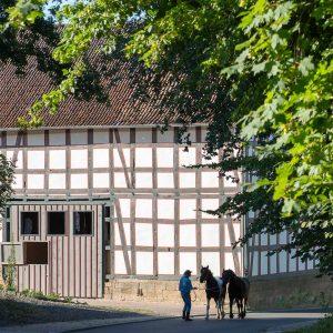 Der Zeidlerhof in Oberbeisheim