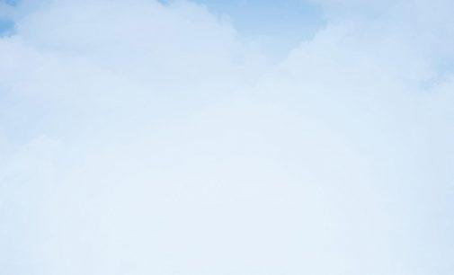 Graushaar: TRIM MicroSol 590XT von Boeing zugelassen