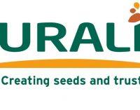 EURALIS Saaten GmbH: Fünf-Sterne-Auszeichnung zum zweiten Mal – ein Teamerfolg