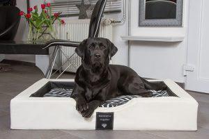 Gel-Hundebett Compact Style