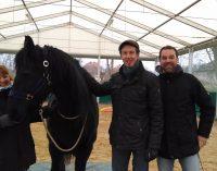 Weiterbildung zum Führungstrainer mit Pferden