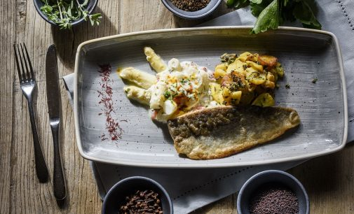BAYURVIDA – eine neue Art des Kochens