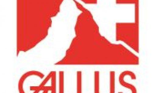 Gallus Immobilien Konzepte über die Innovationskraft der Schweiz