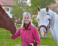 Die Seele der Pferde: Harmonie herstellen und Kraft geben