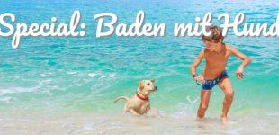Badelust statt Badefrust. So klappt's mit dem Badeurlaub mit Hund!