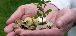 Junge Erwachsene und das liebe Geld