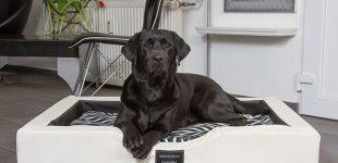 NEUE, exklusive GEL-Hundebetten