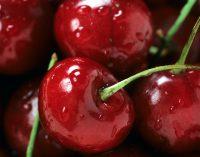 Kirschen für Genuss und Wohlergehen