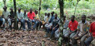 Nachhaltige Landwirtschaft für schulische Bildung