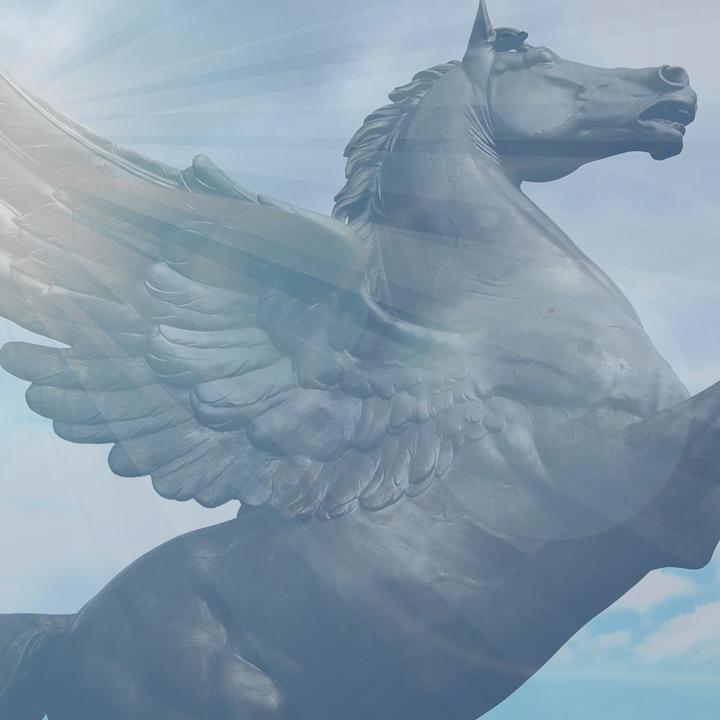 HorseDream. Zwischen Realität und Vision