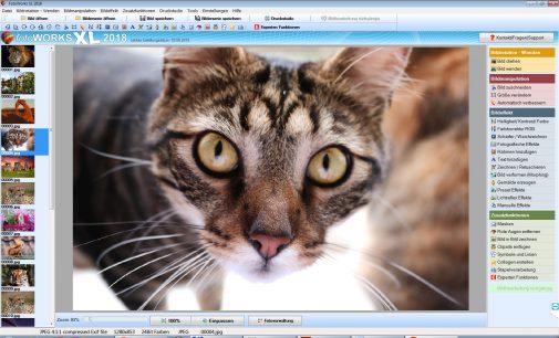 Bildbearbeitungsprogramm für die Familie hier kostenlos herunterladen
