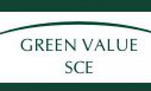 Die Genossenschaft Green Value SCE über die verschleppte Energiewende in Deutschland