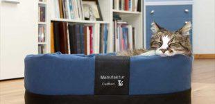 NEU – Exklusive Katzenkörbe für ein gesundes Liegen