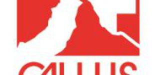 Gallus Immobilien Konzepte über die Zersiedelungsinitiative in der Schweiz