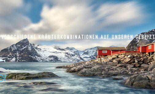 Kreativschmiede Hamburger Fischwerker expandiert