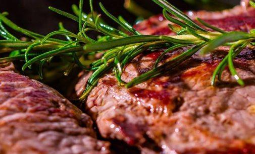 Bio Fleisch – Aus Liebe zum Tier, Natur und Geschmack