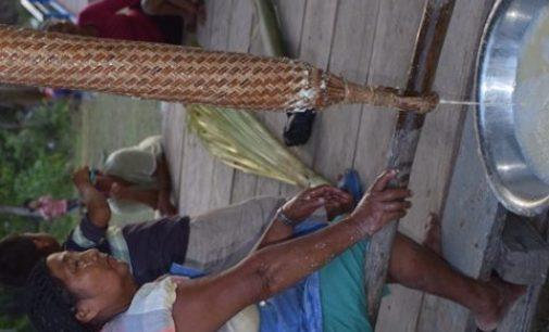 Zu Gast im Dschungel: Guyanas indigene Bevölkerung profitiert zunehmend vom Öko-Tourismus