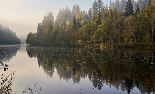 Einmal um die Welt in der Ferienregion Nationalpark Bayerischer Wald