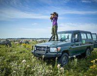 Unbeschwertes Naturerlebnis: 10 Top Naturrouten in der niederländischen Provinz Brabant