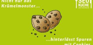 """Cookies im World Wide Web – Was es mit den """"Keksen"""" im Internet auf sich hat"""