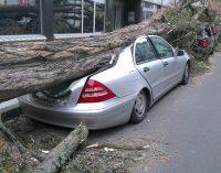 Sturmschäden: Kfz-Versicherung zahlt ab Windstärke 8