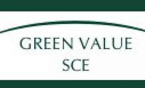 Genossenschaft Green Value SCE: Seegras gegen den Klimawandel