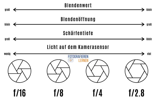 Blende, Blendenwert, Blendenöffnung, Schärfentiefe - FotografierenLernen.net