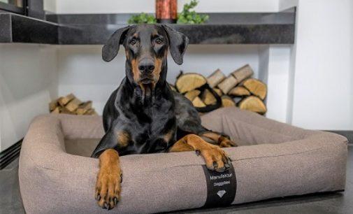 Neue PREMIUM Hundebetten im eleganten Design