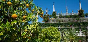 Gartenkunstwerke und unberührte Wildnis