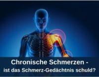 Chronische Schmerzen – ist das Schmerz-Gedächtnis schuld?