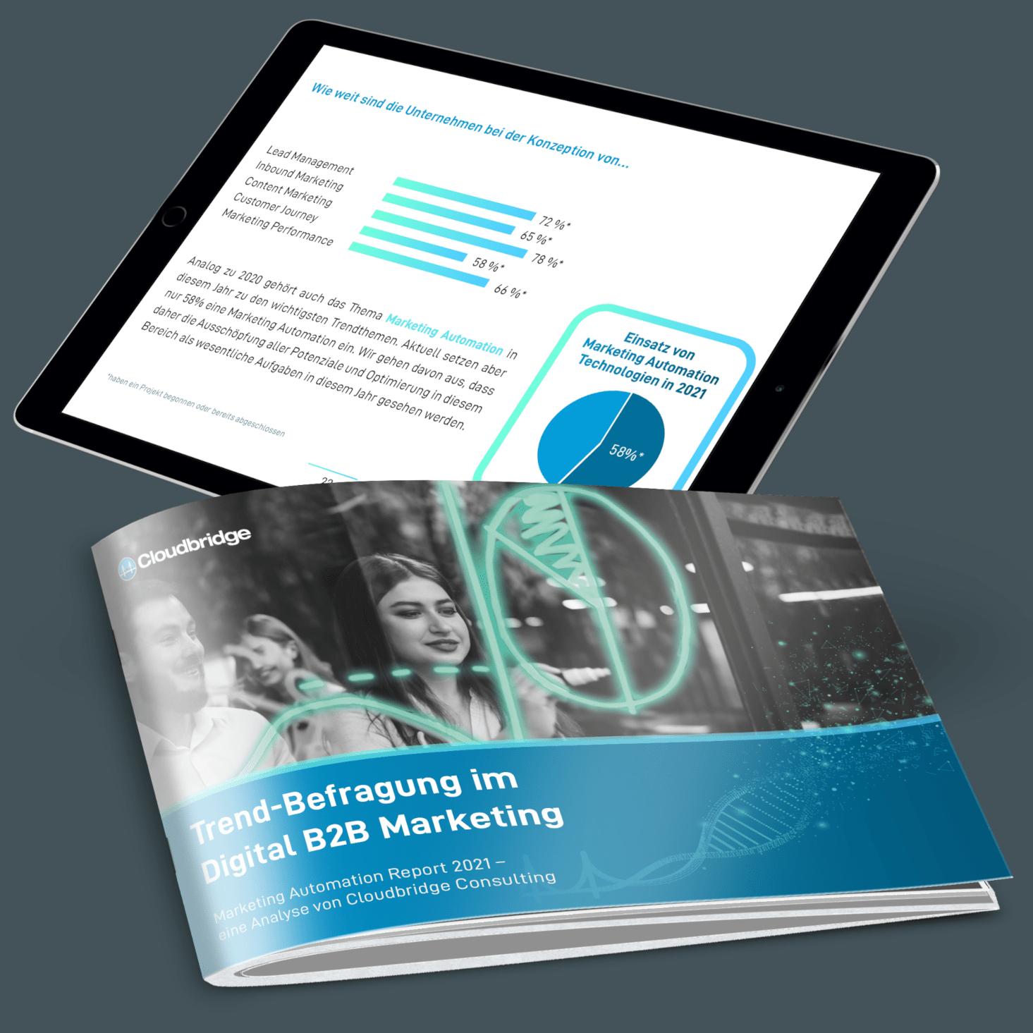 Marketing Automation Report 2021