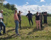Artenvielfalt bei Biogaserzeugung: Chance für Umwelt- und Naturschutz