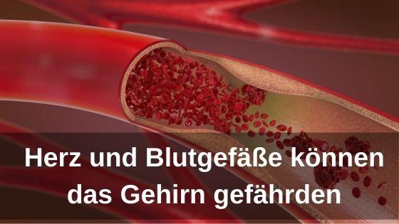 Bioresonanz-News zu Herz und Blutgefäße