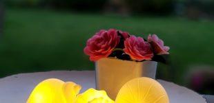 Deko für den Sommertisch und Ihren Lifestyle – Tipps für Ihre Sommerdeko
