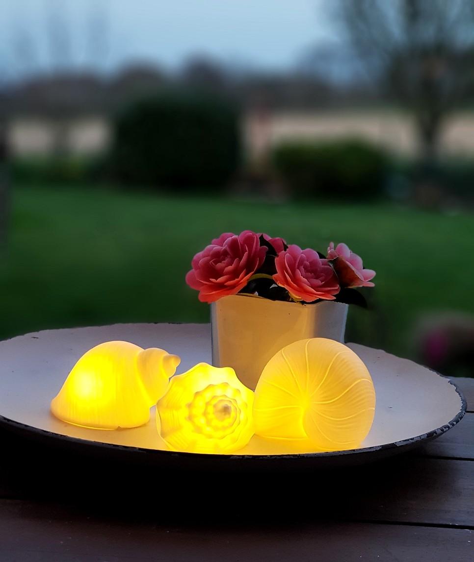 3 Muscheln aus weißem Porzellan mit LED-Beleuchtung für Ihre Sommerdeko