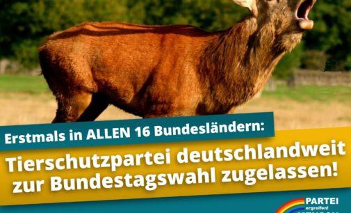 Erstmals tritt die Tierschutzpartei bundesweit an