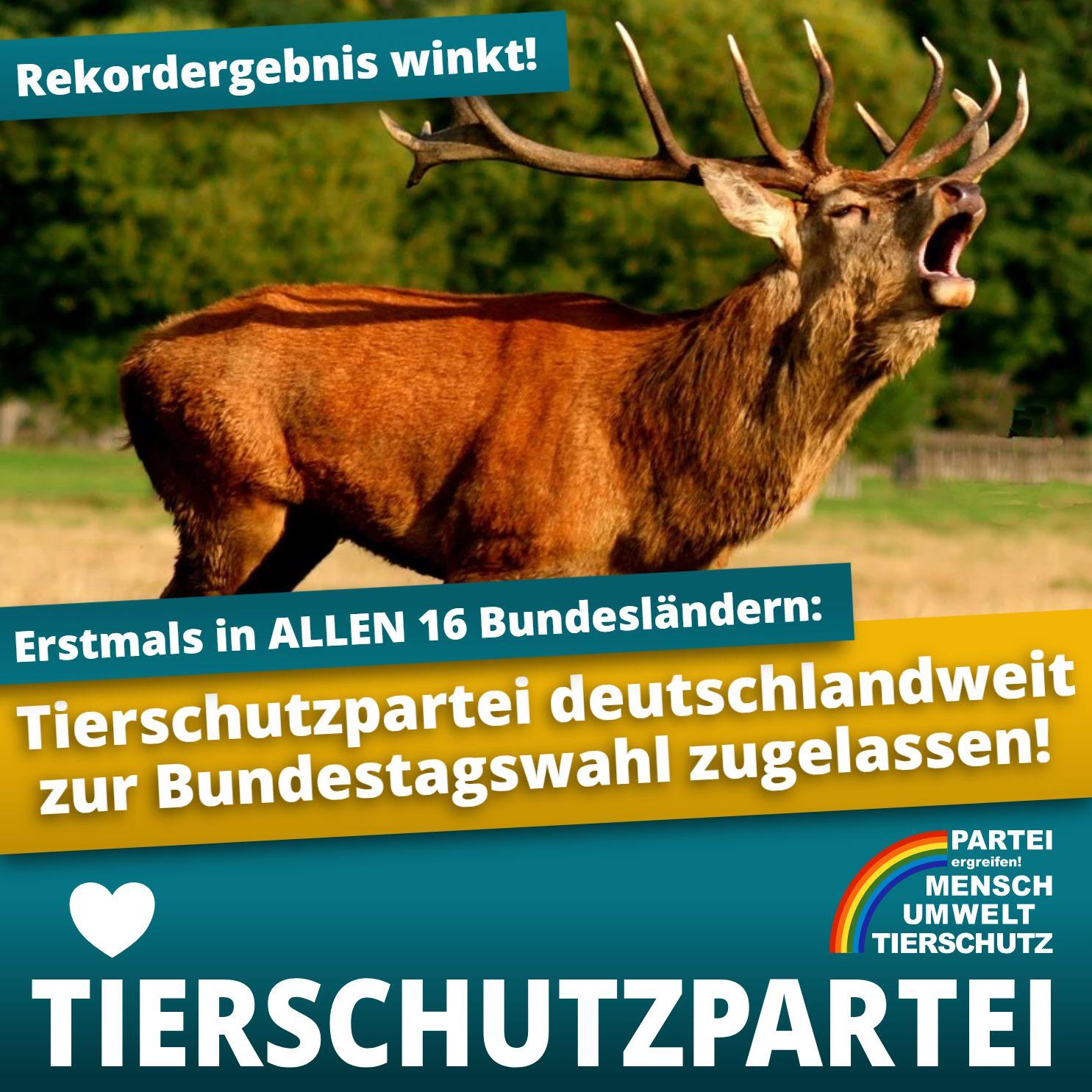 Die Tierschutzpartei startet durch und will am 26. September die 5%-Hürde überspringen.