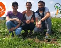 Crowdfunding gegen Food Waste und überzüchtetes Gemüse