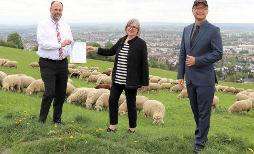 "Reutlingen. Agentur APROS Consulting & Services jetzt zertifiziertes ""TOP Sozial""-Unternehmen"