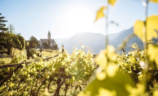5 Dinge, die den Vitalpina-Urlaub im Herbst zum Fest der Sinne machen