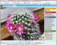 Bildbearbeitungsprogramm Fotoworks XL 2022 in Vorbereitung